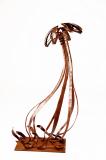 Medusa-en-moviment--2007
