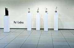 V Col·lectiva joves  artistes seleccionats St. Lluc, 2008